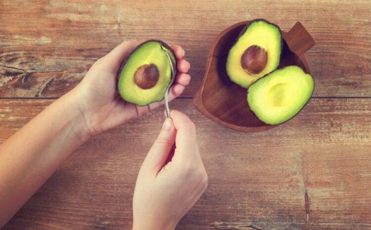 Avocado खाने के क्या फायदे है!  जरुरी इसकी जानकारी देखें