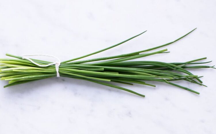 Chives Nutrition Facts – Benefits and How to Use it